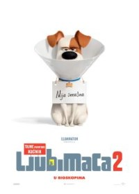 film TAJNE AVANTURE KUĆNIH LJUBIMACA 2 (Sinh.) 3D (The Secret Life of Pets 2)